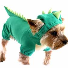 halloween costumes for yorkies dogs popular animals xs dogs buy cheap animals xs dogs lots from china