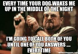 The Middle Memes - every time your dog wakes me up in the middle of the night i m going
