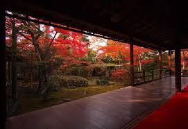 other daihoin myosinji temple autumn japanese indoor japan shrine