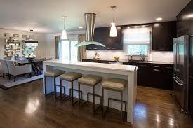 washington dc u0027s best kitchen remodeling resources signature