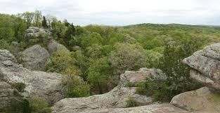 native plants to illinois birds of illinois fall bird watcher u0027s digest