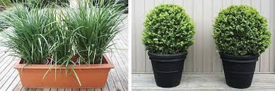 garden design garden design with short term indoor uamp outdoor
