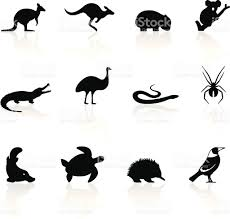stylized animal icons from australia includes a transparent png