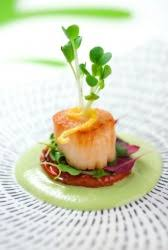 haute cuisine dictionary definition haute cuisine defined