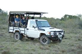 african safari car natural south africa u2013 schotia preserve cshpe learning excursions