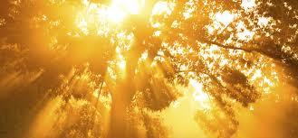 Light And Day Hours Of Light And Dark Ignatian Spirituality