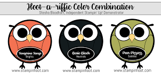 color combination with black hoot a riffic color combination tangerine tango basic black pear