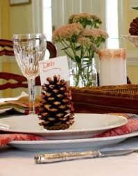 64 best diy pine cone images on