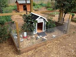 Backyard Chicken Coops Plans by Backyard Chicken Coops Plans With Inside Chicken Coops 12927