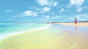 last minute holidays to boa vista 2017 2018 thomson now tui