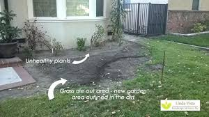 Curb Appeal Diy - easy front yard curb appeal front yard curb appeal landscaping