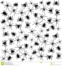 halloween spiders background black spider and beetle on white halloween background stock photo