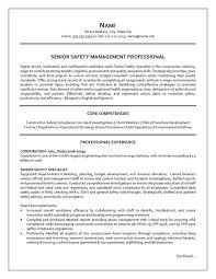 logistic advisor resume sap logistics execution consultant cv
