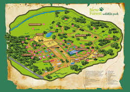The Forest Map The Park Map New Forest Wildlife Park