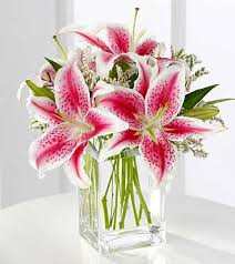 get well flowers stargazer lily bouquet i hospital gift shop