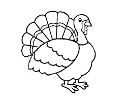bird coloring pages for toddlers turkey drawing easy at getdrawings com free for personal use
