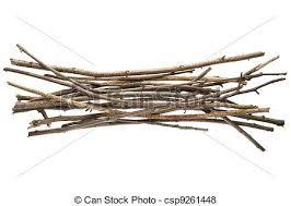 sticks and twigs wood bundle isolated on white background