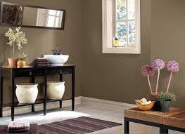 living room drawing room colour pretty paint colors for living
