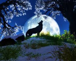 wolf howling at moon by nefradenile on deviantart