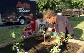 4x8 Raised Bed Vegetable Garden Layout How To Build A Raised Vegetable Garden This Old House
