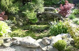 Indoor Rock Garden - best rock garden design ideas diycozyworld home stunning rock