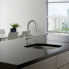 waterridge euro style pull out kitchen faucet costco weekender