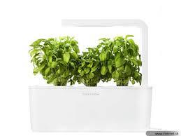 kräutertopf küche click and grow kräutertopf smart herb garden geeignet für kräuter