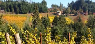 brigadoon vineyards willamette valley oregon