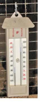 Termometer Kandang Ayam info peternakan membuat kandang ayam yang benar