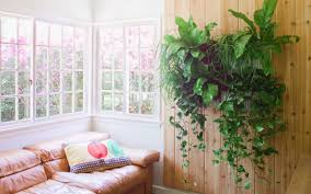 plant indoor wall planters awesome wall planters diy learn how