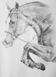 gallery horse pencil drawings for sale drawing art gallery