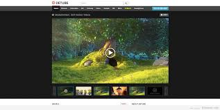 19 best wordpress video themes for 2017 85ideas com