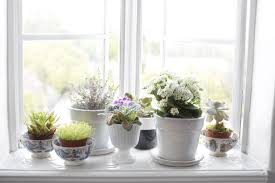 kitchen ideas kitchen windowsill herb garden kitchen sink window