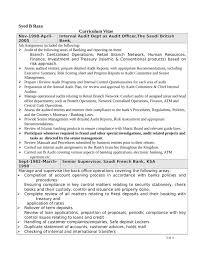 sample resume bank internal auditor professional resumes example