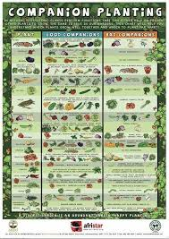 Companion Planting Garden Layout Raised Garden Planting Layouts Leave A Reply Cancel Reply