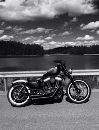 Harley Davidson 174 Seat Cover 905 Best Harley Images On Pinterest Motorcycles Cafe Racers And