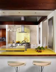 architecture interesting yellow kitchens design with yellow