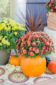 Fall Garden Decorating Ideas 121 Best Fall Decor Diy Images On Pinterest Diy Fall Crafts