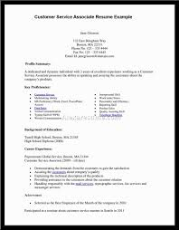 Customer Service Objective Resume Resume Examples And Samples Objective