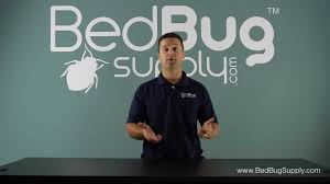 Bug Bombs For Bed Bugs Why Bug Bombs Do Not Work Against Bed Bugs Youtube
