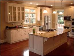 White Kitchen Cabinets With Glass Doors Kitchen Kitchen Cabinet Doors With Glass Bodbyn Glass Door Off