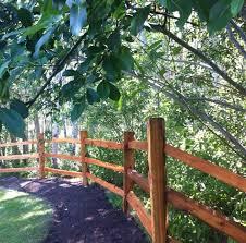 best 25 cedar fence ideas on backyard fences wood