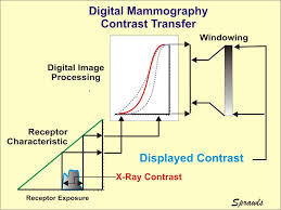 the physics and technology of mammography