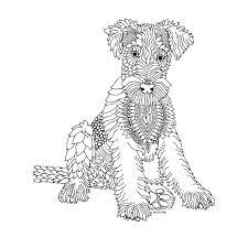 25 mandalas animales ideas pintar animales
