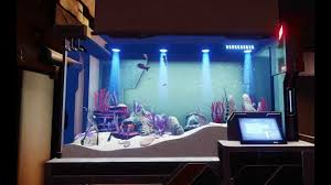 citizen hangar decoration fish tank