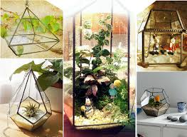 handmade hanging tabletop clear glass greenhouse glass hanabusa