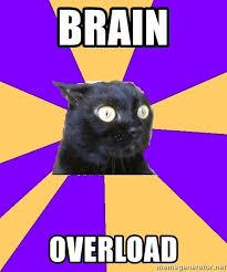 Overload Meme - brain overload anxiety cat meme generator