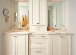 Thin Bathroom Cabinet by Storage Mirror Ikea Tags Ikea Bathroom Mirror With Shelf Benevola