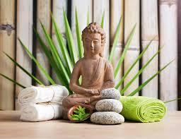 Wohnzimmer Einrichten Pflanzen Besseres Wohnklima Dank Zimmerpflanzen Wohnen