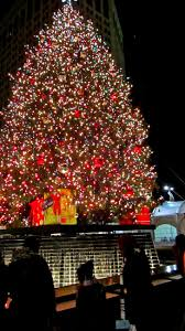 tree lighting ceremony lottery when is in